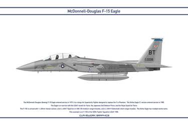 Eagle USA 525th Fighter Squadron 1