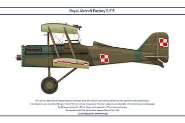RAF SE5 Poland 1