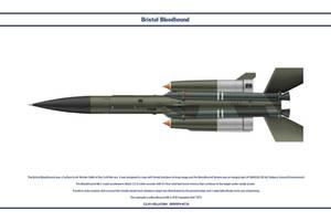 Bloodhound Mk 2 85 Sqn by WS-Clave
