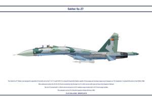 Su-27 Eritrea 1 by WS-Clave
