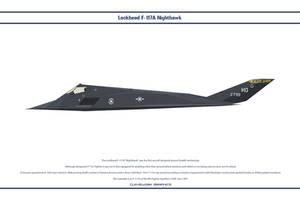 F-117A USAF 8FS 1 by WS-Clave