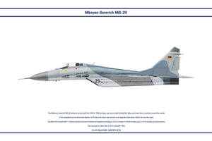 MiG-29 Germany 1 by WS-Clave