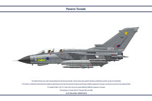 Tornado GB 31 Sqn 1 by WS-Clave