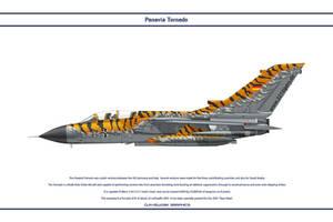 Tornado Germany JaboG 32 2 by WS-Clave