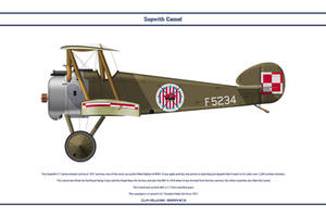 Camel Poland 7 Esk by WS-Clave
