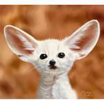 fennec fox by GeorgianaEdera
