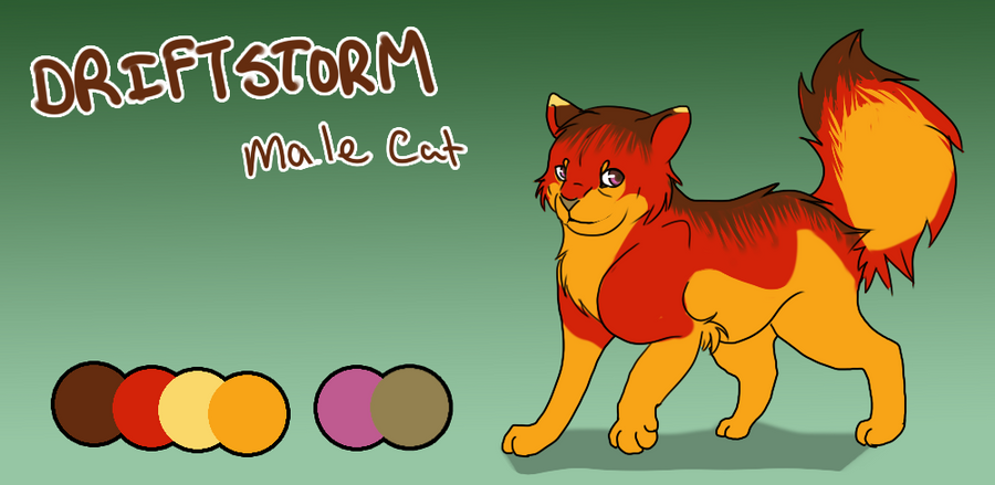 Application form- Driftstorm Driftstorm__ref_sheet_by_rinqz-d5km60t