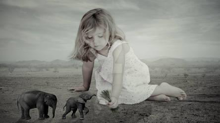 Baby Girl and Elephants