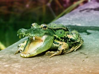 Frog-croc