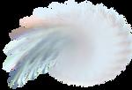 Fractal PNG 14