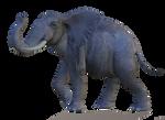 Elephant 3 PNG