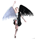 Angel Blk and White Wings PNG