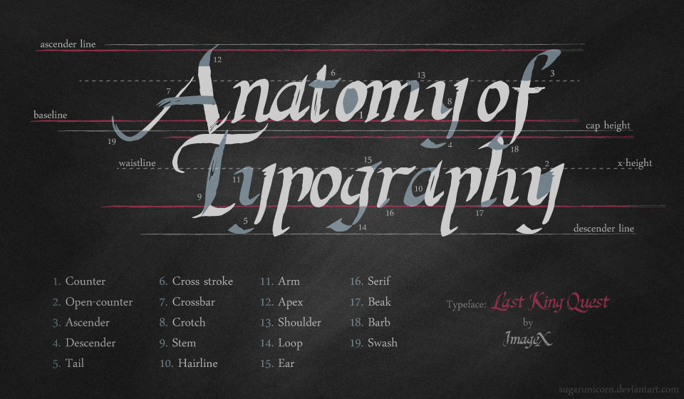 Anatomy of Type by sugarunicorn on DeviantArt