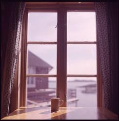.good morning lofoten.