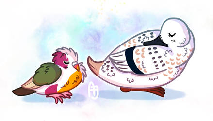 Dove and duck - day 23 24 #avianaugust