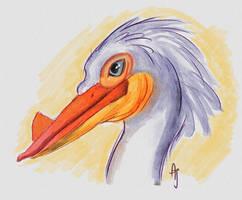 Snow Pelican - Day 30 #avianaugust