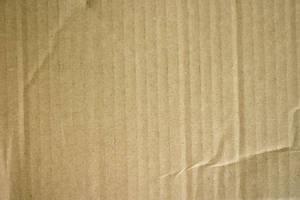 Cardboard 1 by lostandtaken