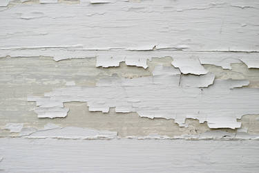 Chipped Paint 2