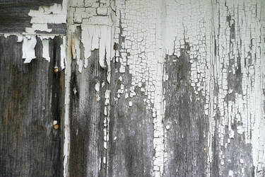 Chipped Paint 3