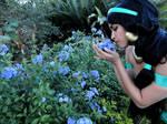 Jasmine at the garden