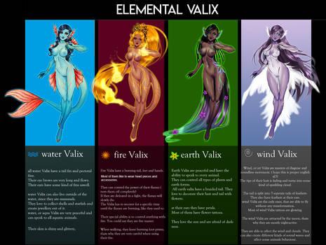 Element Valix Info sheet
