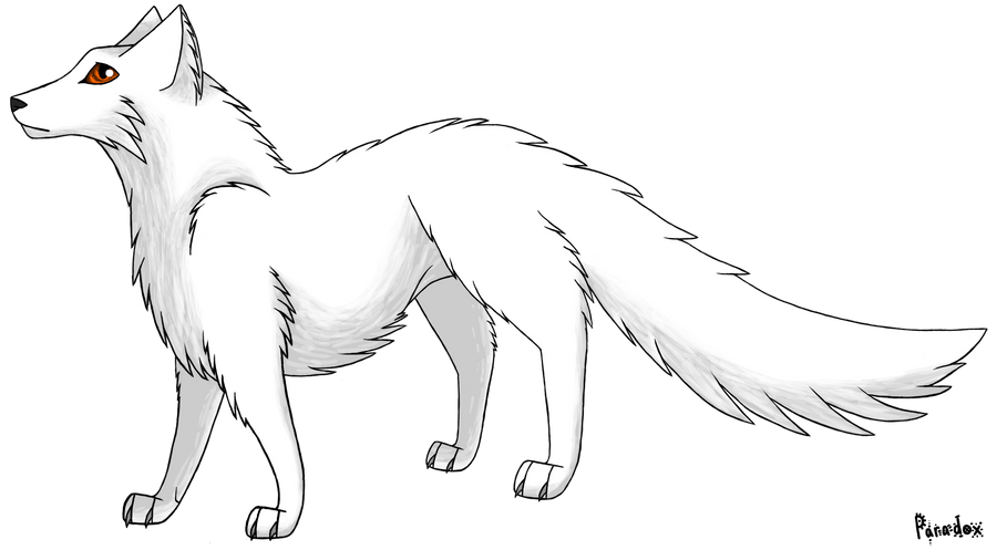 baby arctic fox coloring pages cute - photo #49