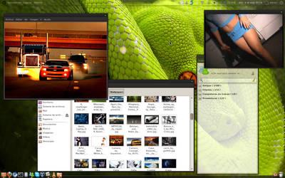 My Ubuntu Lucid 10.04LTS by eLorDVipeR