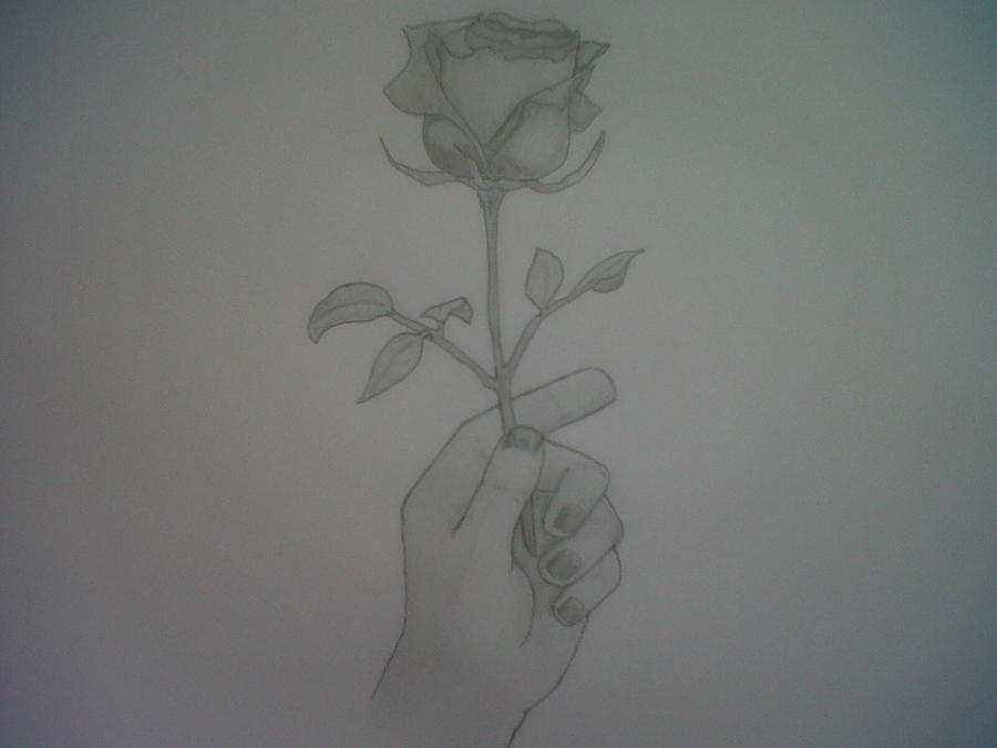 Holding a rose by shikyochiizu on deviantart for Hand holding a rose drawing