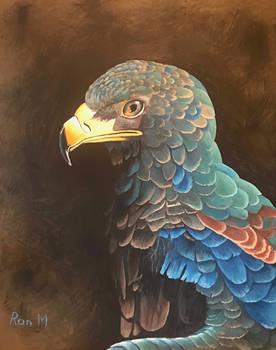 Batluer Eagle in Acrylic