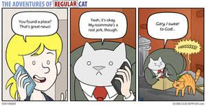 The Adventures of Regular Cat - Roommate