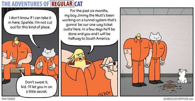The Adventures of Regular Cat - Digs by tomfonder