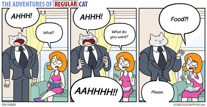 The Adventures of Regular Cat - Communication