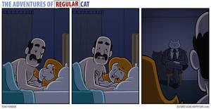The Adventures of Regular Cat - Voyeur