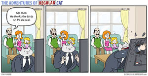 The Adventures of Regular Cat - Television