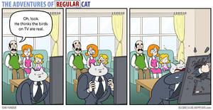 The Adventures of Regular Cat - Television
