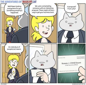The Adventures of Regular Cat - Contact