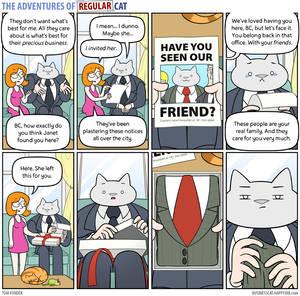 The Adventures of Regular Cat - Family