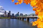 Portland in the fall