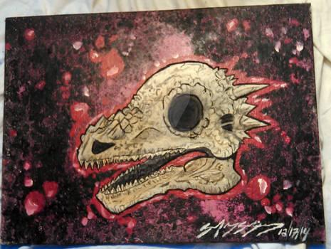 Pachycephalosaurus skull.