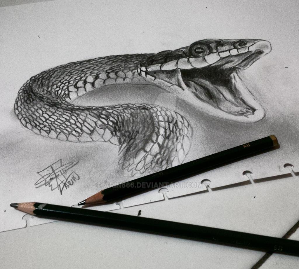 Black mamba by arin666 on DeviantArt