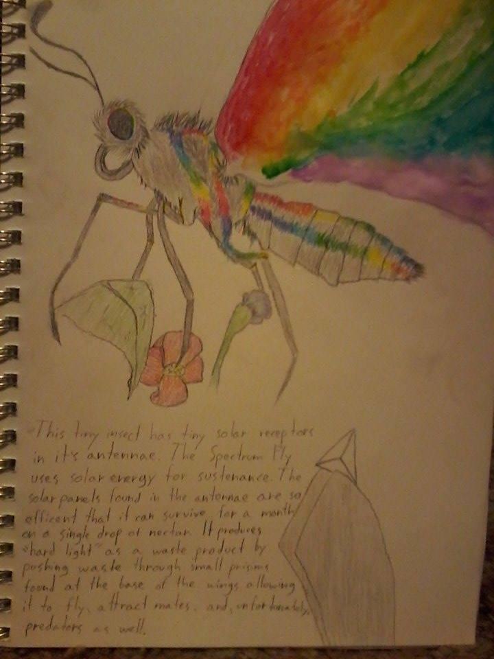 Spectrum Fly by demonbarber