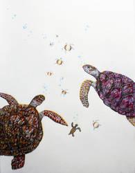 Turtle Bubbles