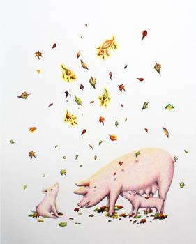 Autumn Pigs