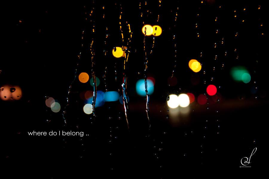 belonging reflection