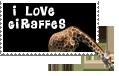 giraffe by theestephasaurusrex