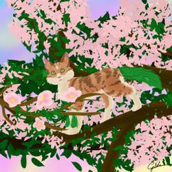 Pine by Cynlife