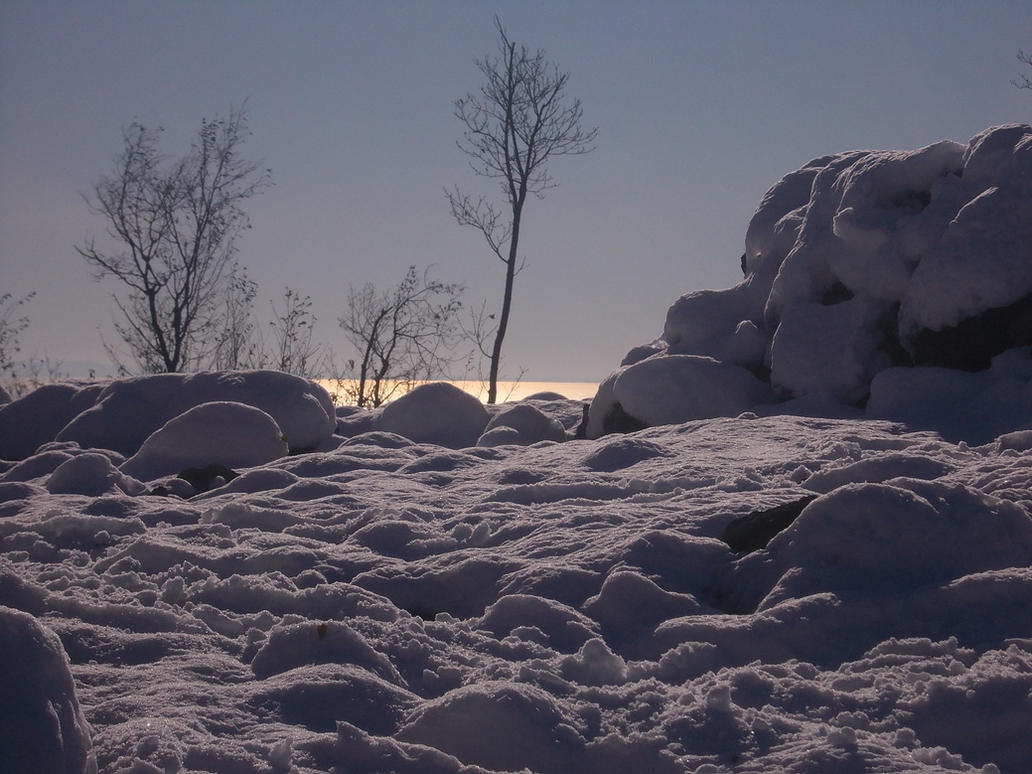 Neve sul Carso by ZarthialDragon