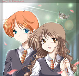 Ron and Hermione again by jojoju