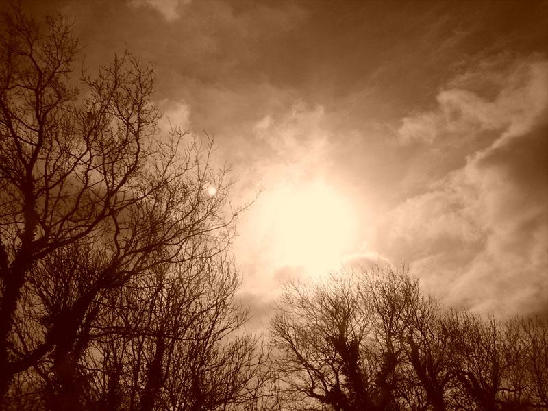Burning Sun by InsaneDivinity