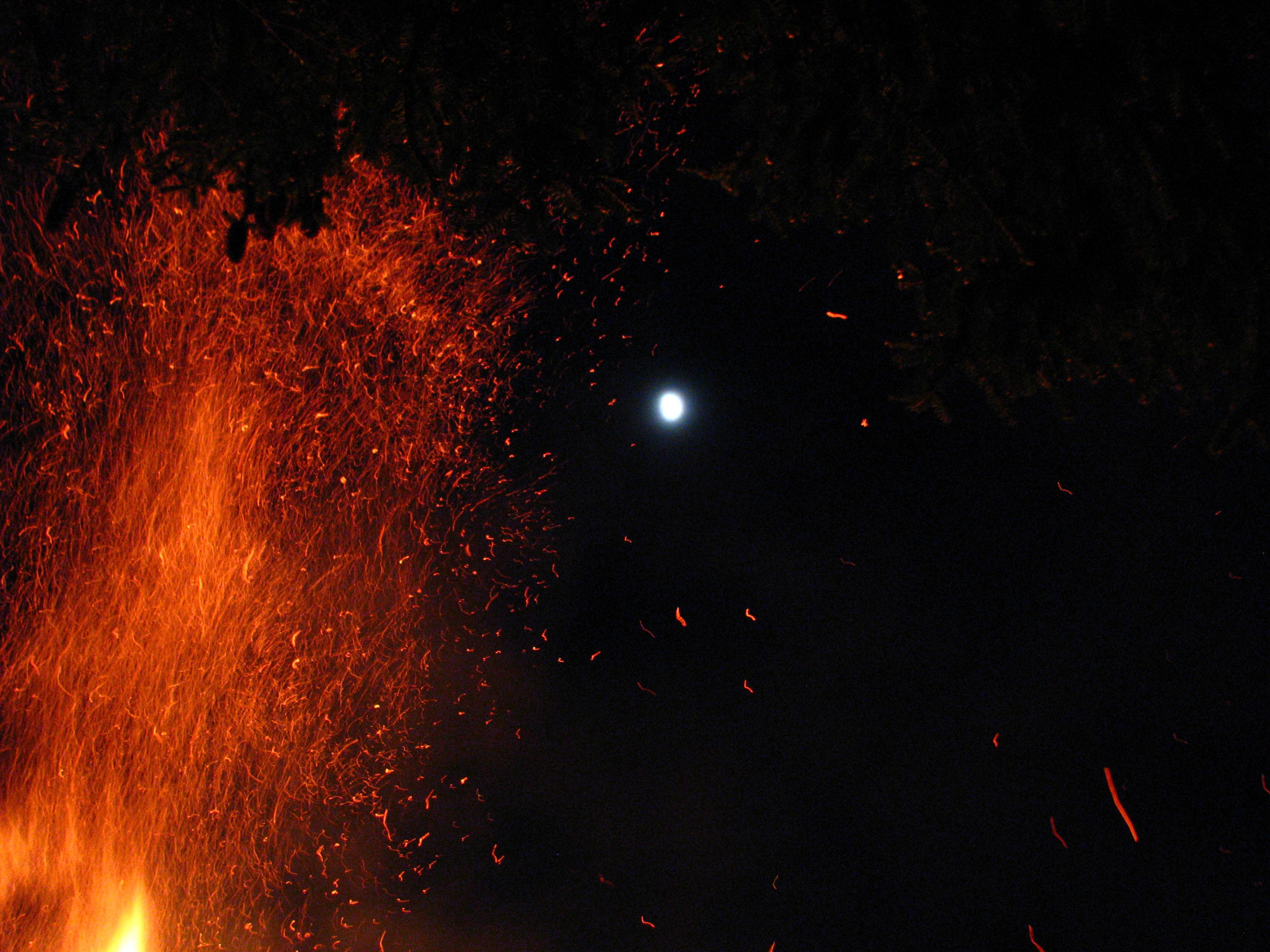 Bonfire 5